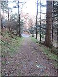 J3829 : The lower end of the Drinneevar Loop incline by Eric Jones