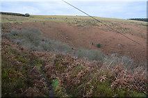 SS7849 : North Devon : Footpath & Moorland by Lewis Clarke