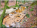 TQ4429 : Iron-coloured stream in the Millbrook Valley by Marathon