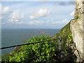 SS6949 : Jenny's Cove viewpoint 3 - Lee Abbey, North Devon by Martin Richard Phelan