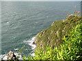 SS6949 : Jenny's Cove viewpoint 4 - Lee Abbey, North Devon by Martin Richard Phelan