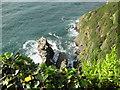 SS6949 : Jenny's Cove viewpoint 6 - Lee Abbey, North Devon by Martin Richard Phelan