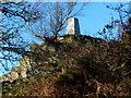 SK4513 : Triangulation pillar on Bardon Hill by Mat Fascione