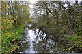 SP3576 : River Sowe downstream from the footbridge out of Whitley Grove, southeast Coventry by Robin Stott