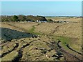 NU2325 : Northumberland Coast Path at Newton Link by Alan Murray-Rust