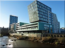 SK3587 : By The River Don in Sheffield by Neil Theasby
