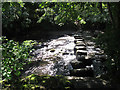 SX8188 : Stepping stones across the Teign by Stephen Craven