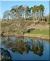 NZ1099 : Reflection in the Coquet by Alan Murray-Rust