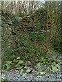 NZ0548 : Lime kiln at Lead Mill, Muggleswick – 3 by Alan Murray-Rust