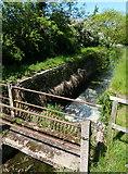 SK8336 : Footbridge 59a at Stenwith Bottom Lock No 13 by Mat Fascione
