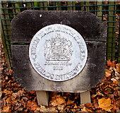 SO9568 : Queen Elizabeth II Diamond Jubilee 2012 sign, Bromsgrove by Jaggery