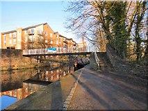 SJ9398 : Random on the Ashton Canal by Gerald England