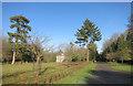 SU3474 : Driveway at Inholmes Holt by Des Blenkinsopp