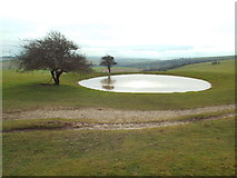 TQ3213 : Pond on the South Downs, near Ditchling Down by Malc McDonald