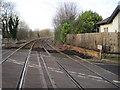 NZ4150 : Hall Dene railway station (site), County Durham by Nigel Thompson