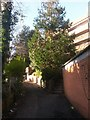 SZ0891 : Bournemouth: uphill on Dalkeith Lane by Chris Downer