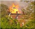 TQ0451 : Clandon Park Ablaze by Colin Smith