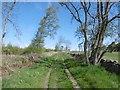 NU0127 : Green lane, Fowberry Moor by Richard Webb