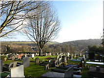 TQ3355 : Caterham Cemetery: early January 2017 (g) by Basher Eyre