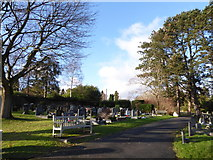 TQ3355 : Caterham Cemetery: early January 2017 (j) by Basher Eyre