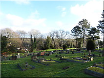 TQ3355 : Caterham Cemetery: early January 2017 (m) by Basher Eyre