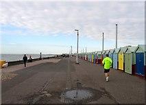 TQ2704 : Western Esplanade, Hove by Simon Carey
