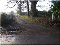 TQ2116 : Footpath goes south from Furners Lane by Shazz