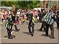 SU5832 : New Alresford - Morris Dancers by Colin Smith