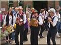 SU5832 : Morris Band by Colin Smith