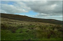 SX6781 : Moorland by the B3212 by N Chadwick