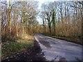 SO8060 : Road to Sinton Green, near Monkwood Green, Worcs by P L Chadwick