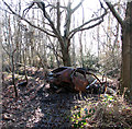 TG4500 : Burned and dumped in a ditch beside a path by Evelyn Simak