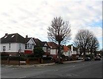 TQ2704 : 96-104, New Church Road, Aldrington, Hove by Simon Carey