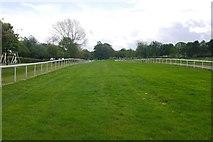SE4422 : Pontefract racecourse by Richard Webb