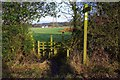 SP0575 : Stile on North Worcestershire Path, near Forhill, Worcs by P L Chadwick