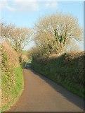 SW9843 : Lane to Tregerrick by Derek Harper