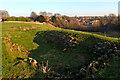 NZ3231 : Middleham Castle by Mick Garratt