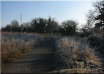 TL4352 : Nearing the A10 on a frosty morning by John Sutton