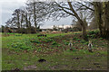TR1434 : Picnic area by Ian Capper