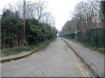 TQ1977 : Alongside the railway [1] by Michael Dibb