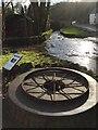 SS5489 : Tyring Ring by Alan Hughes