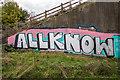 TL4160 : Graffiti under M11 by Kim Fyson