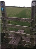 SS9168 : Stile and Footpath by Alan Hughes