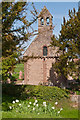 SO4430 : St Mary's and St David's Church, Kilpeck by Ian Capper