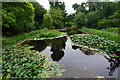 ST8661 : Lily pond in the Courts Garden by Bill Boaden