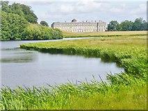 SU9622 : Petworth Park - Upper Pond by Colin Smith