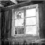 TG2909 : Broken window in an old shed by Evelyn Simak