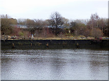 NS4865 : New Harbour, Paisley by Thomas Nugent