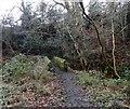 NZ0955 : Stone footbridge over the Small Burn by Robert Graham
