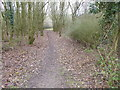 TQ4394 : Path in Roding Valley Meadows Local Nature Reserve by Marathon
